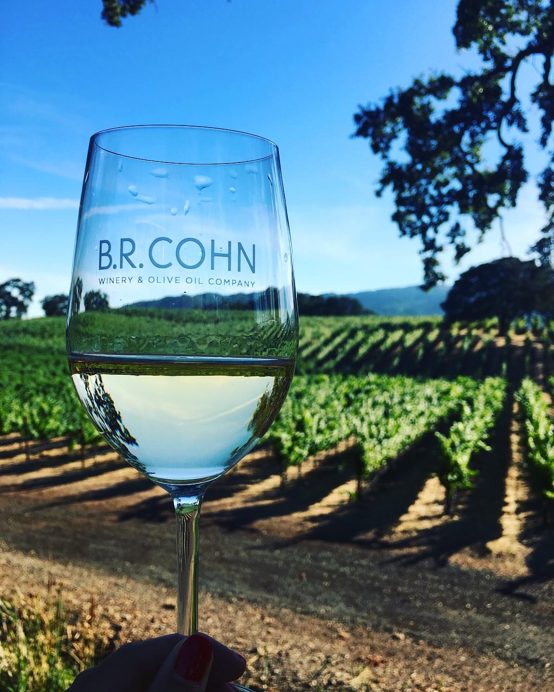 B.R Cohn's Winery