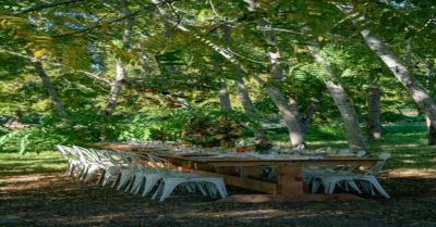 Ecolibrium Farms